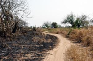 paesaggi del distretto di Caia - presso Sombe
